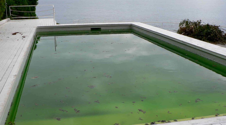 Зеленый бассейн